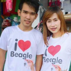 beagle-cover